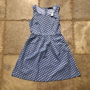 The Limited NWT Size 8 Polka Dot Day Dress So Cute